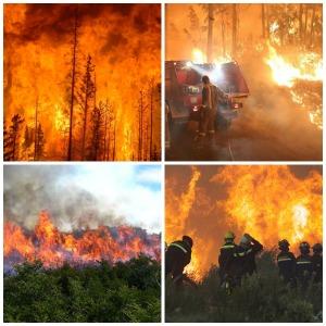 Batefuegos Incendios forestales